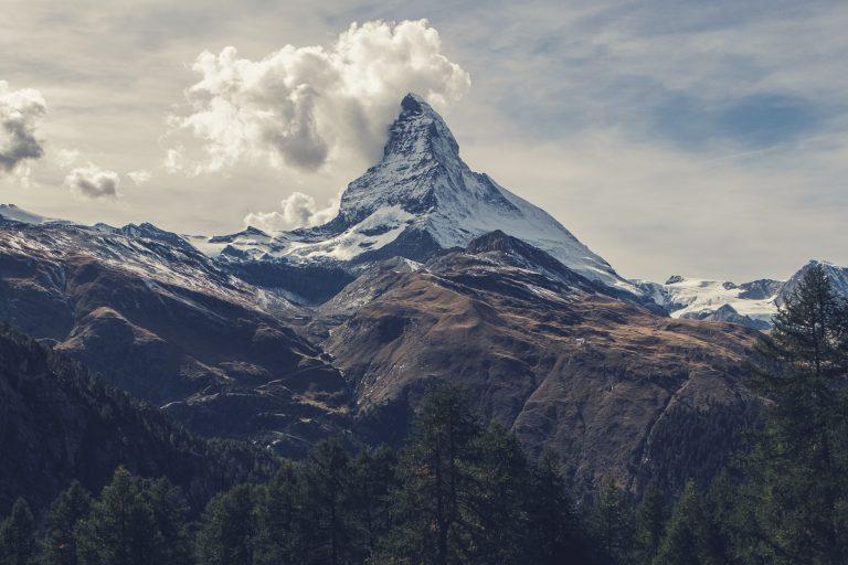 Viamonda expandiert in die Schweiz und nach Österreich